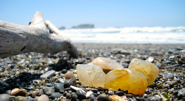 Agate Hunting on the Oregon Coast